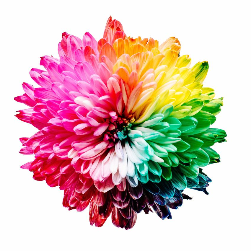 Come scegliere e abbinare i colori in un progetto grafico