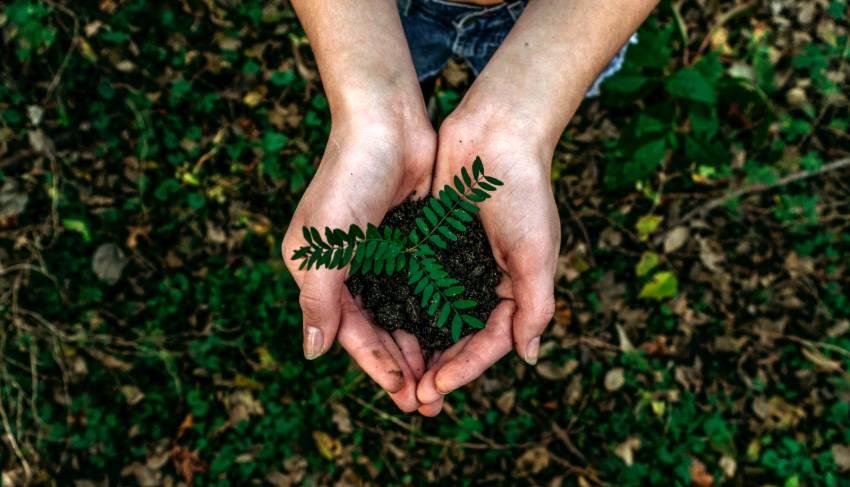 Stampa a basso impatto ambientale
