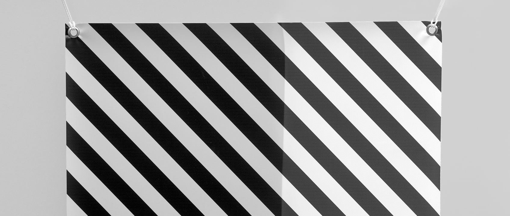 Stampa Banner retroilluminabile